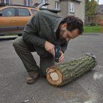 Úprava odříznuté větve s úkrytem – připevnění dna dutiny a nepropustné stříšky.