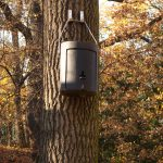 Celoroční dřevocementové budky, které slouží jako kompenzace za zaniklé úkryty vpokácených stromech a které mohou netopýři využívat i během zimního spánku.